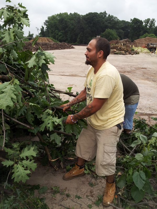 2013 TreeKeeper Arturo unloads tree debris at the Fairmount Park Recycling Center.